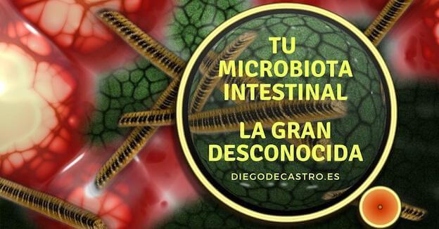 Tu microbiota Intestinal, la gran desconocida