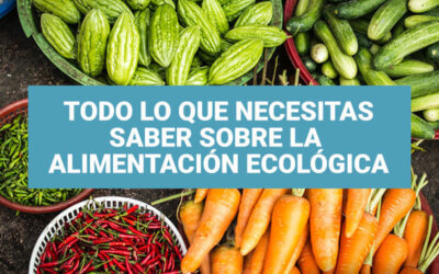 Tus dudas sobre los alimentos ecológicos ¡Respondidas!