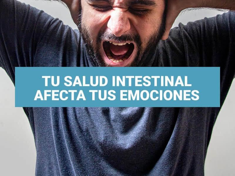 Tu salud intestinal afecta tus emociones