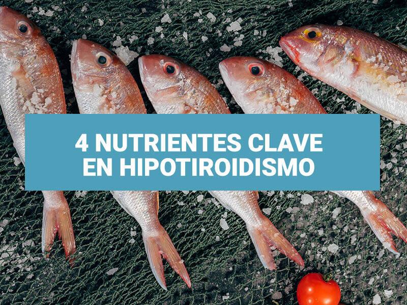 4 Nutrientes clave en Hipotiroidismo