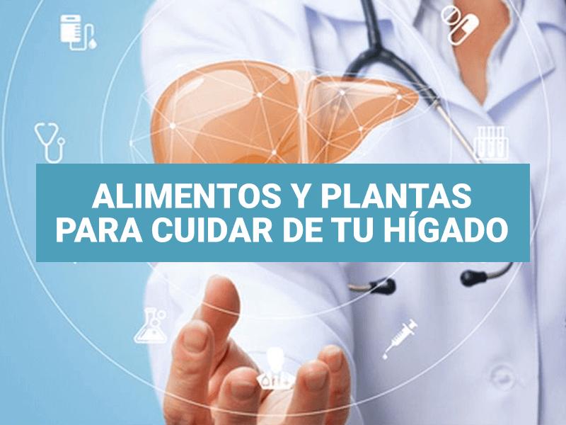 Alimentos y plantas para cuidar de tu hígado